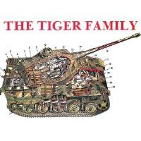 Tiger Family, The