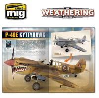 "#27 ""Shelf King, P-40E Kyttyhawk, Paint Stripping"""
