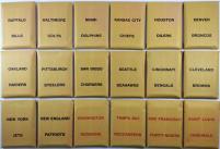 APBA Football 1981 Player Cards