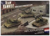 PRTL AA Platoon