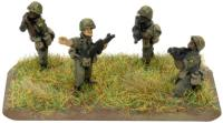 Rifle Platoon (Airmobile)