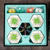 Trellis - A Game of Zen and Blossoms