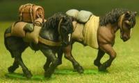 Pack Horse, Walking