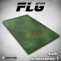 6' x 4' - Grasslands #1