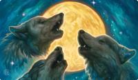 3 Wolf Moon Playmat