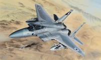 F-15B/D USAF & Israeli (2 in 1)