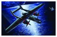 "USAAF Northrip P-61B ""Black Widow"" - Last Shot Down 1945"