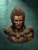 Celtic Chieftain