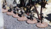 Force on Force Platoon Box