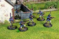 Ashigaru Infantry Section