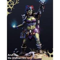 Aruh'Ka - The Shaman Orc