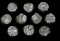 25mm Beveled Bases - Shattered Ritual