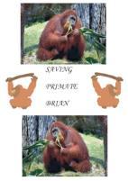 Saving Primate Brian