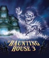 Haunting House, The #3 - Don't Go in the Attic!
