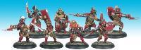 Secutor Combat Team