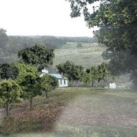 "Deciduous Trees - Mixed Green (3/4"" - 2"")"