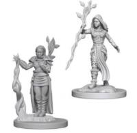 Human Female Druid