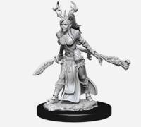 Human Female Druid #2
