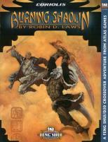 Burning Shaolin