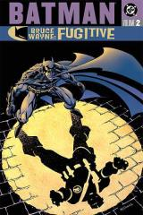 Batman - Bruce Wayne, Fugitive Vol. 2