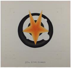 12th Star Guard Original Unit Insignia