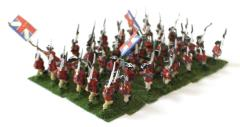 British Infantry Collection #12