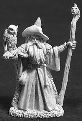 Amathor the Arch Mage w/Owl Familiar