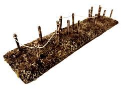 Barbed Wire - Wasteland