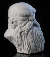 Dwarf Oldor