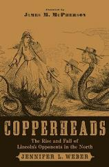 Copperheads - The Rise and Fall of Lincoln's Opponents in the North