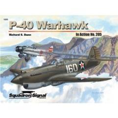 P-40 Warhawk in Action
