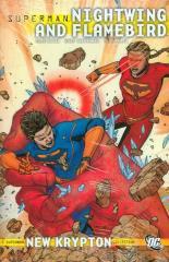Superman - Nightwing & Flamebird Vol. 2