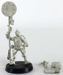Renegade Guard Standard Bearer #1