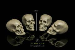 Big Skulls #2