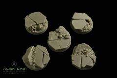 25mm Northern Land #2 (Round Bases)