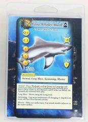 Grey Pointer Shark - Turning