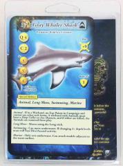 Grey Pointer Shark - Arching Back