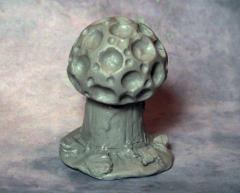 Brain Cap Mushroom