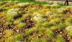 Grass Mats - Stony Steppe