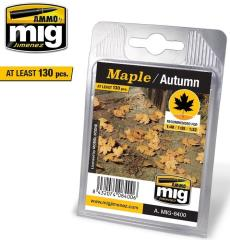 Leaves - Maple/Autumn