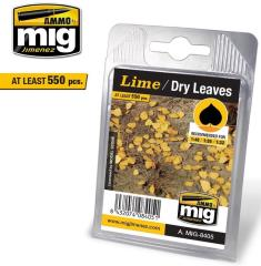 Leaves - Lime/Dry Leaves