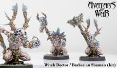 Barbarian Shaman