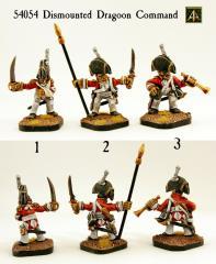 Dismounted Dragoon Command