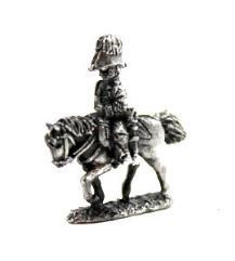 Wellington & British General
