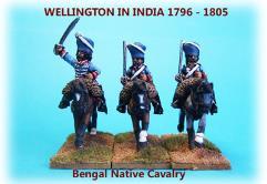 Bengal Native Cavalry Unit