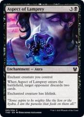 Aspect of Lamprey (C)