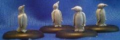 Adult Penguins Group
