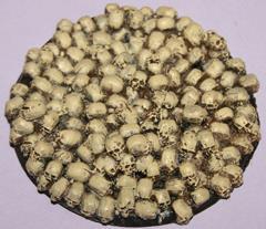 60mm Round - Skull Bases