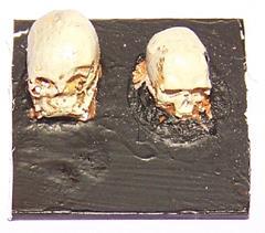 28mm Resin Skulls