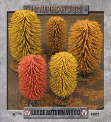 Autumn Woods - Large